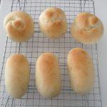 手ごねパン作り!手ごねでパンを作ろう!ブログ開始!